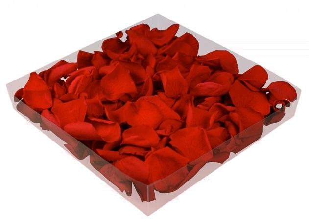 Pétalos de rosas preservados y liofilizados